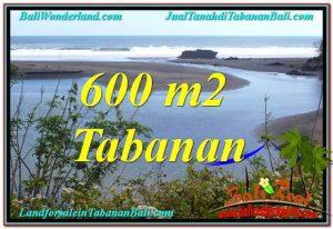 DIJUAL MURAH TANAH di TABANAN Untuk INVESTASI TJTB344