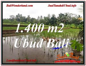 TANAH di UBUD BALI DIJUAL MURAH TJUB615
