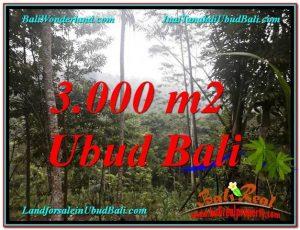 DIJUAL TANAH di UBUD 3,000 m2 di Ubud Payangan