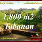 DIJUAL MURAH TANAH di TABANAN 1,800 m2 di Tabanan Selemadeg