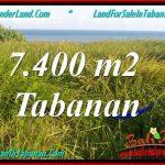 JUAL TANAH di TABANAN BALI 7,400 m2 View Laut, Gunung dan sawah