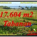 TANAH MURAH DIJUAL di TABANAN Untuk INVESTASI TJTB342