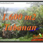 INVESTASI PROPERTY, JUAL TANAH di TABANAN TJTB348