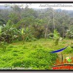 JUAL MURAH TANAH di TABANAN BALI 98 Are View Laut dan sawah