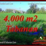 INVESTASI PROPERTY, TANAH MURAH di TABANAN BALI DIJUAL TJTB352