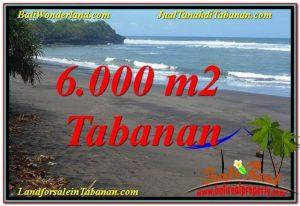 JUAL MURAH TANAH di TABANAN BALI 60 Are di Tabanan Selemadeg