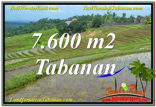 TANAH MURAH DIJUAL di TABANAN 7,600 m2 di Tabanan Selemadeg