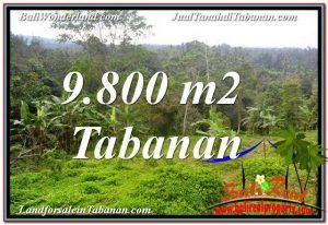 JUAL MURAH TANAH di TABANAN BALI 98 Are di Tabanan Selemadeg