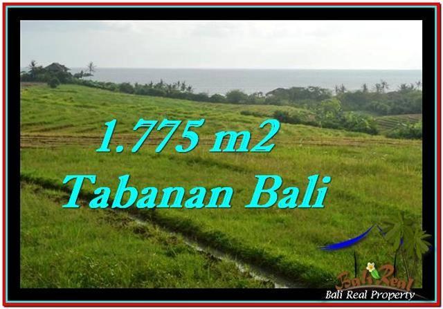JUAL TANAH di TABANAN BALI 17.75 Are View sawah, laut dan gunung