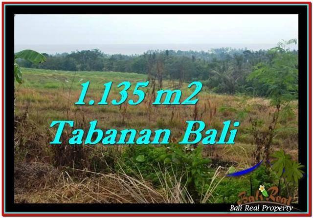 TANAH MURAH DIJUAL di TABANAN BALI Untuk INVESTASI TJTB253