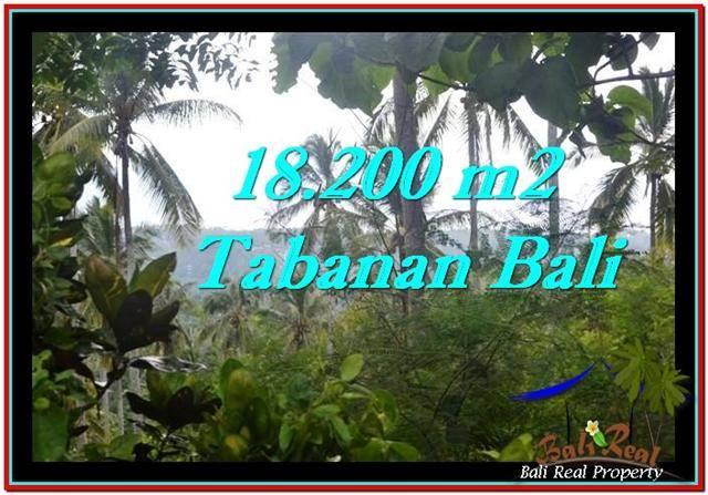 TANAH MURAH DIJUAL di TABANAN BALI Untuk INVESTASI TJTB254