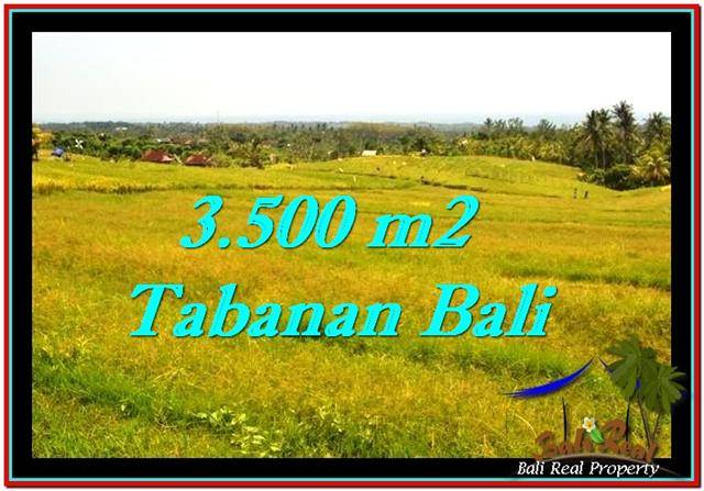 TANAH di TABANAN JUAL MURAH 3,500 m2 View sawah dan laut