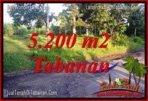JUAL MURAH TANAH di TABANAN BALI 5,200 m2 View Kebun dan Sungai