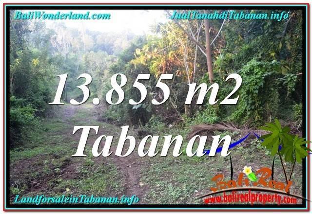 TANAH DIJUAL di TABANAN BALI Untuk INVESTASI TJTB335
