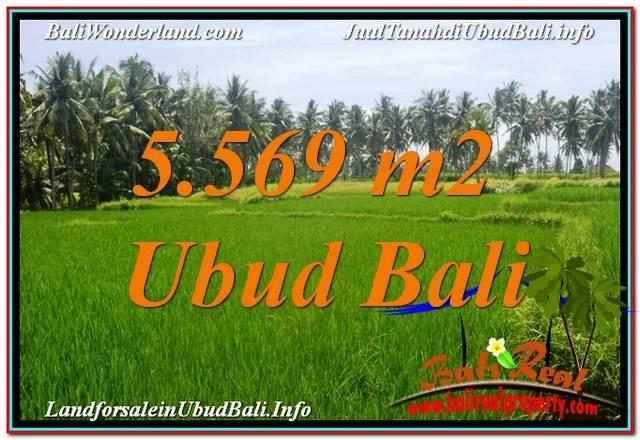 INVESTASI PROPERTY, JUAL TANAH MURAH di UBUD BALI TJUB642