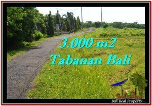DIJUAL TANAH di TABANAN 3,000 m2 di Tabanan Selemadeg
