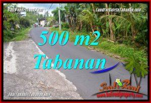 TANAH MURAH DIJUAL di TABANAN BALI 500 m2 di Tabanan Kerambitan