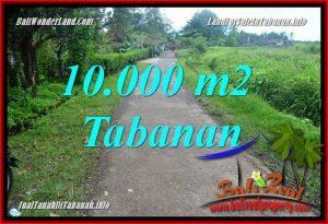 TANAH MURAH di TABANAN BALI DIJUAL 10,000 m2 di Tabanan Selemadeg
