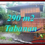 JUAL TANAH di TABANAN BALI Untuk INVESTASI TJTB358