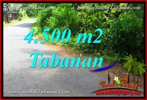 TANAH MURAH di TABANAN DIJUAL Untuk INVESTASI TJTB380