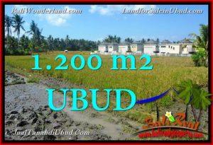 JUAL MURAH TANAH di UBUD BALI 12 Are View Sawah link Villa