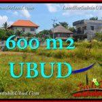 INVESTASI PROPERTY, TANAH MURAH di UBUD BALI TJUB664