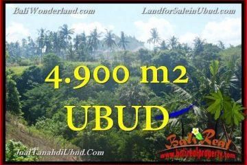 TANAH di UBUD BALI DIJUAL MURAH TJUB665