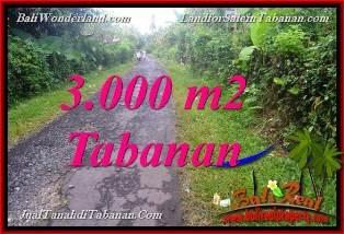 INVESTASI PROPERTI, DIJUAL MURAH TANAH di TABANAN BALI TJTB366