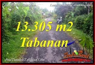 TANAH DIJUAL MURAH di TABANAN BALI 133.05 Are di Tabanan Selemadeg