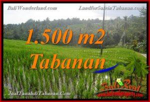TANAH DIJUAL di TABANAN BALI 1,500 m2 di Tabanan Selemadeg