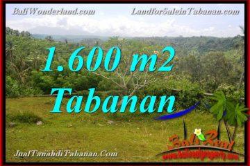 TANAH MURAH DIJUAL di TABANAN Untuk INVESTASI TJTB378
