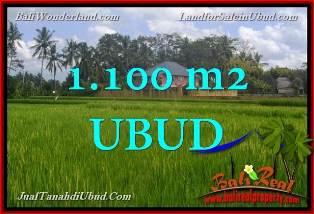 TANAH DIJUAL MURAH di UBUD TJUB651