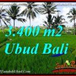 TANAH MURAH di UBUD DIJUAL Untuk INVESTASI TJUB656