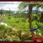 TANAH DIJUAL di TABANAN BALI 11 Are View Danau Beratan dan Gunung