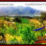 JUAL TANAH MURAH di TABANAN BALI 15 Are View Danau Beratan dan Gunung