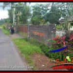TANAH di TABANAN BALI DIJUAL 2,280 m2 View Laut, Gunung dan sawah
