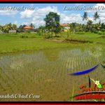 JUAL TANAH di UBUD BALI 4,900 m2 View Sawah link Villa