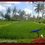 TANAH MURAH di UBUD BALI DIJUAL 250 Are View sawah, tebing dan sungai