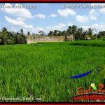 JUAL MURAH TANAH di UBUD 34 Are View Sawah link Villa