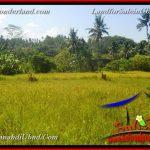 TANAH di UBUD DIJUAL MURAH 4,000 m2 di Ubud Gianyar