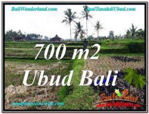 TANAH di UBUD BALI DIJUAL MURAH TJUB666