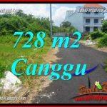 TANAH MURAH di CANGGU DIJUAL 7.28 Are di CANGGU BRAWA