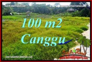 TANAH MURAH DIJUAL di CANGGU 1 Are di CANGGU BRAWA