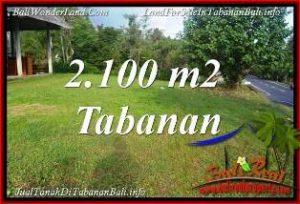 JUAL TANAH MURAH di TABANAN 2,100 m2 di TABANAN SELEMADEG