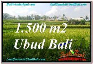 TANAH MURAH DIJUAL di UBUD BALI Untuk INVESTASI TJUB667