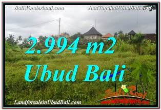JUAL TANAH di UBUD Untuk INVESTASI TJUB672