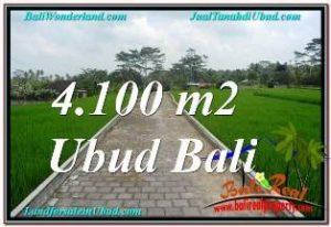 TANAH DIJUAL di UBUD 4,100 m2 di SENTRAL UBUD