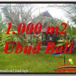 TANAH JUAL MURAH UBUD 10 Are VIEW SAWAH, LINGKUNGAN VILLA