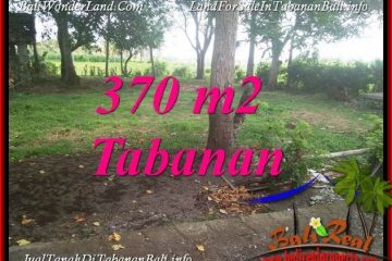 DIJUAL TANAH MURAH di TABANAN BALI Untuk INVESTASI TJTB383