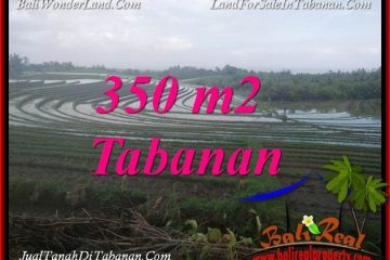 INVESTASI PROPERTY, JUAL TANAH MURAH di TABANAN BALI TJTB386